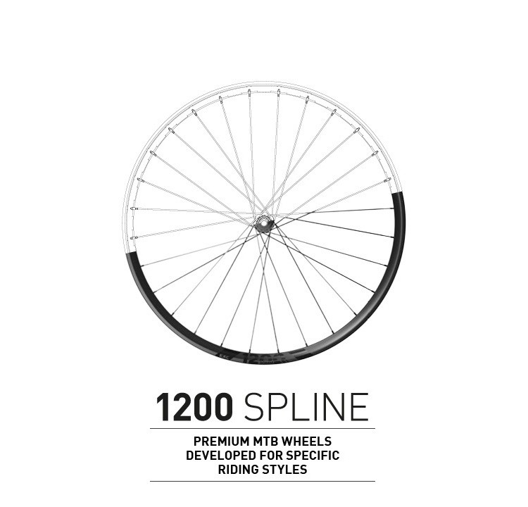 Introducing the New DT Swiss 1200 SPLINE MTB Wheels